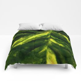 For Cezanne. Comforters