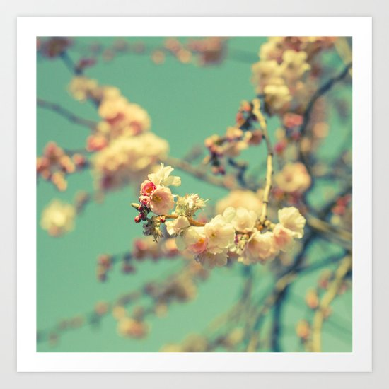 Pink blue blossom Art Print
