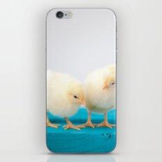 Baby Chicks iPhone & iPod Skin