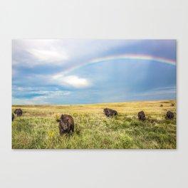 Rainbows and Bison - Buffalo on the Tallgrass Prairies of Oklahoma Canvas Print