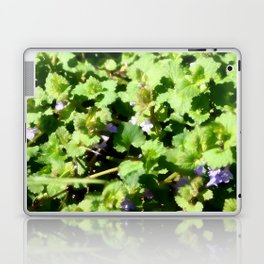 Ground Ivy 07 Laptop & iPad Skin