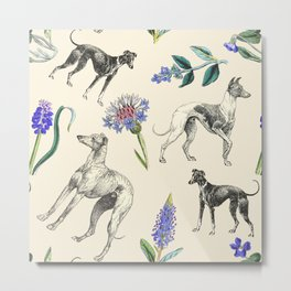 GREYHOUND DOGS & PRESSED FLOWERS Metal Print