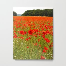 Sea of Normandy Poppies Metal Print