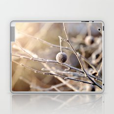 Hanging by a Thread Laptop & iPad Skin