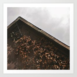 Camouflage - Red Leaves on Barn Art Print