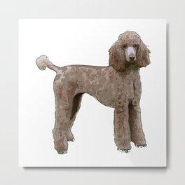 Elegant Poodle Metal Print