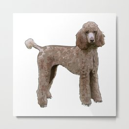 Royal Standard Poodle dog Metal Print