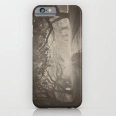 Avenue of Oaks Slim Case iPhone 6s
