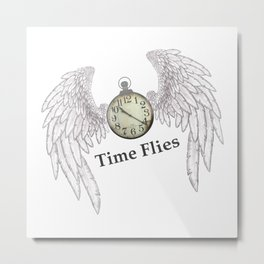 Time Flies Metal Print