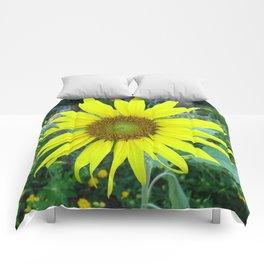 Stunning Sunflower Comforters