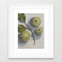 windfall apples Framed Art Print