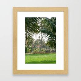 Exotic Palm Trees Framed Art Print