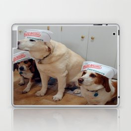 DoughnutDogs Laptop & iPad Skin