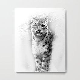 Snow Leopard 2 Metal Print