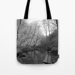 Remnants of a Waterfall  Tote Bag
