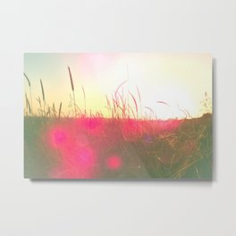 Will You Stay With Me, Will You Be My Love Among the fields of barley Metal Print