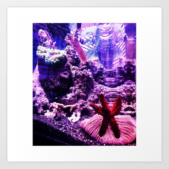 fish life Art Print