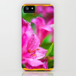 Pink Hibiscus with Bubble Border iPhone Case