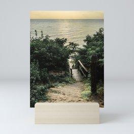 stairs to the beach in the lake Mini Art Print