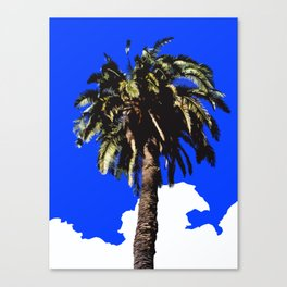 Palm Tree in Lisbon Canvas Print