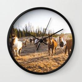 Horses at golden hour Wall Clock