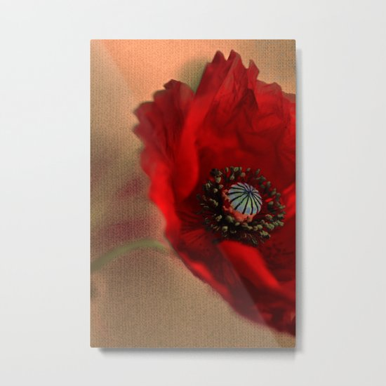Poppies(romantic). Metal Print