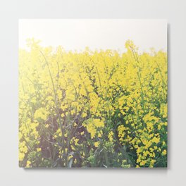 Yellow Raps Field Metal Print