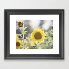 Sunflower Flower Photography, Yellow Sunflowers Floral Nature Photography Framed Art Print
