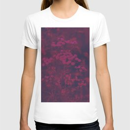 Photograph of wild and wild plants in the field beside the river, in warm color and intense pink T-shirt