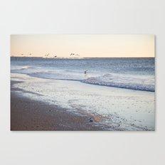 Birdy Beach  Canvas Print