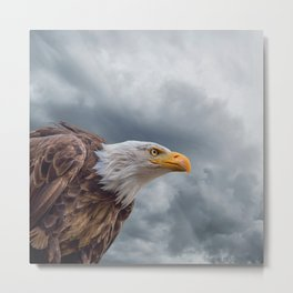 Bald Eagle Cloud Montage Metal Print