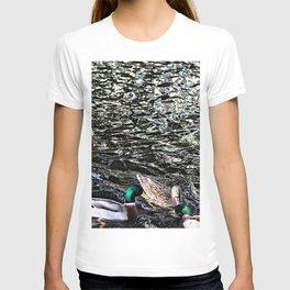 Mallard Ducks Swimming Waterfowl Lake T-shirt