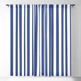 Stripe blue & white vertical Blackout Curtain