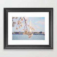 Washington Monument in the Spring Framed Art Print