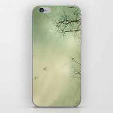Fly Away With Me 2 iPhone & iPod Skin