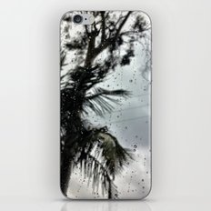 Rain. iPhone & iPod Skin