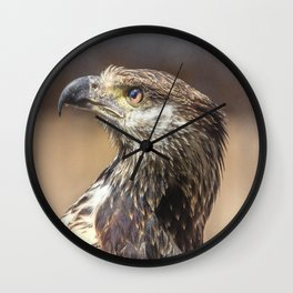 Young African Fish Eagle Wall Clock
