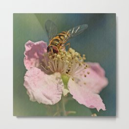 Textured Hoverfly Metal Print