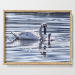 Cygnet with Mother Serving Tray