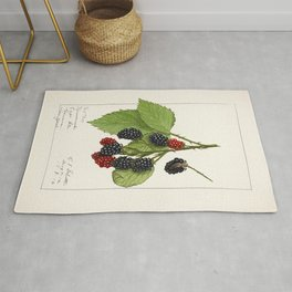 Blackberries (Rubus subg Rubus Watson) (1912) by Ellen Isham Schutt Rug