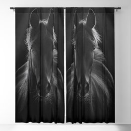 No One To Run With - Beautiful Horse Portrait black and white photograph - photography - photographs Blackout Curtain
