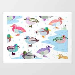 Nice Weather For Ducks Art Print