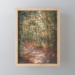 Colours of Autumn at Mono Cliffs | #2 Framed Mini Art Print