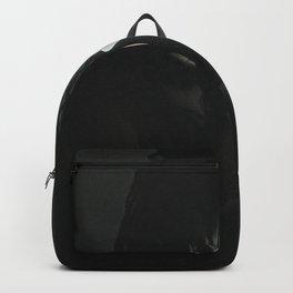 Finder of the light Backpack