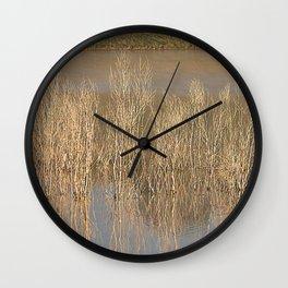 17ne010 Wall Clock