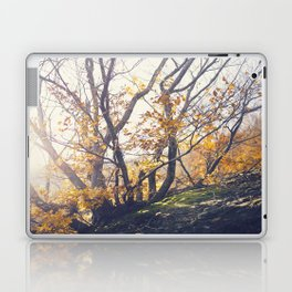 Dreamy yellow forest Laptop & iPad Skin