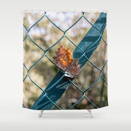 Oak leaf trapped Shower Curtain
