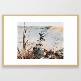 Jockeys Ridge, Outer Banks Framed Art Print
