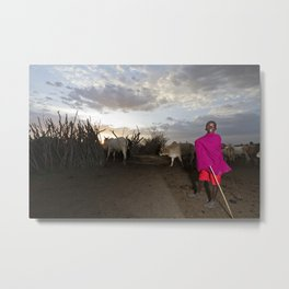 Young Shepherd Returns for the Night Metal Print