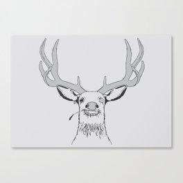 Deer, Pirate  Canvas Print